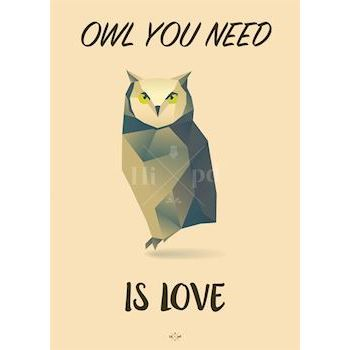 Hipd plakat, Owl You Need Is Love