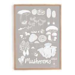 Lisa Grue plakat, Mushrooms