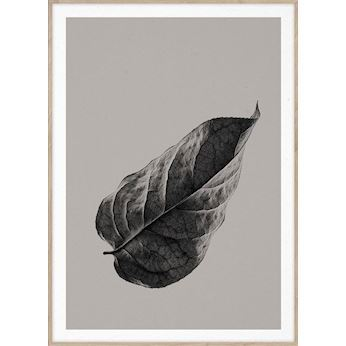 Paper Collective plakat, Sabi Leaf #1