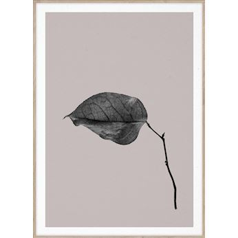 Paper Collective plakat, Sabi Leaf #3