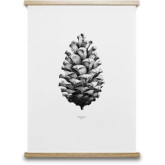 Paper Collective plakat, 1:1 Pine Cone